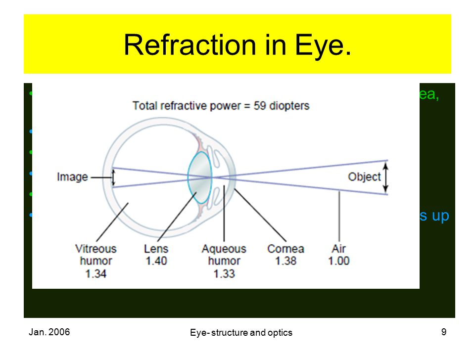 Eye- structure and optics