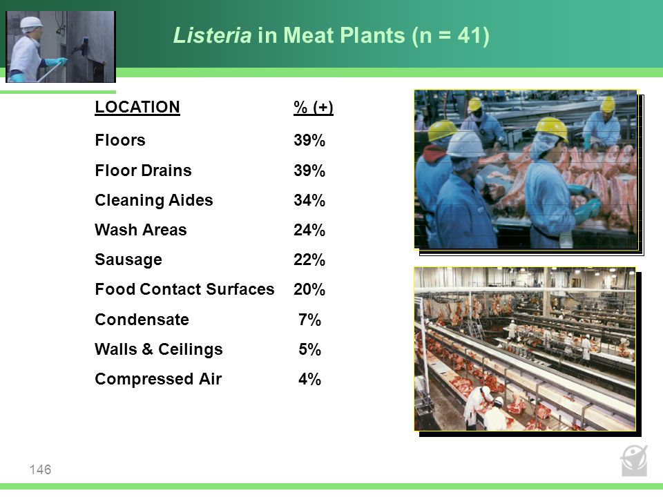 Listeria in Meat Plants (n = 41)
