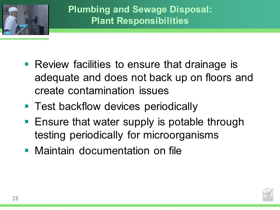 Plumbing and Sewage Disposal: Plant Responsibilities