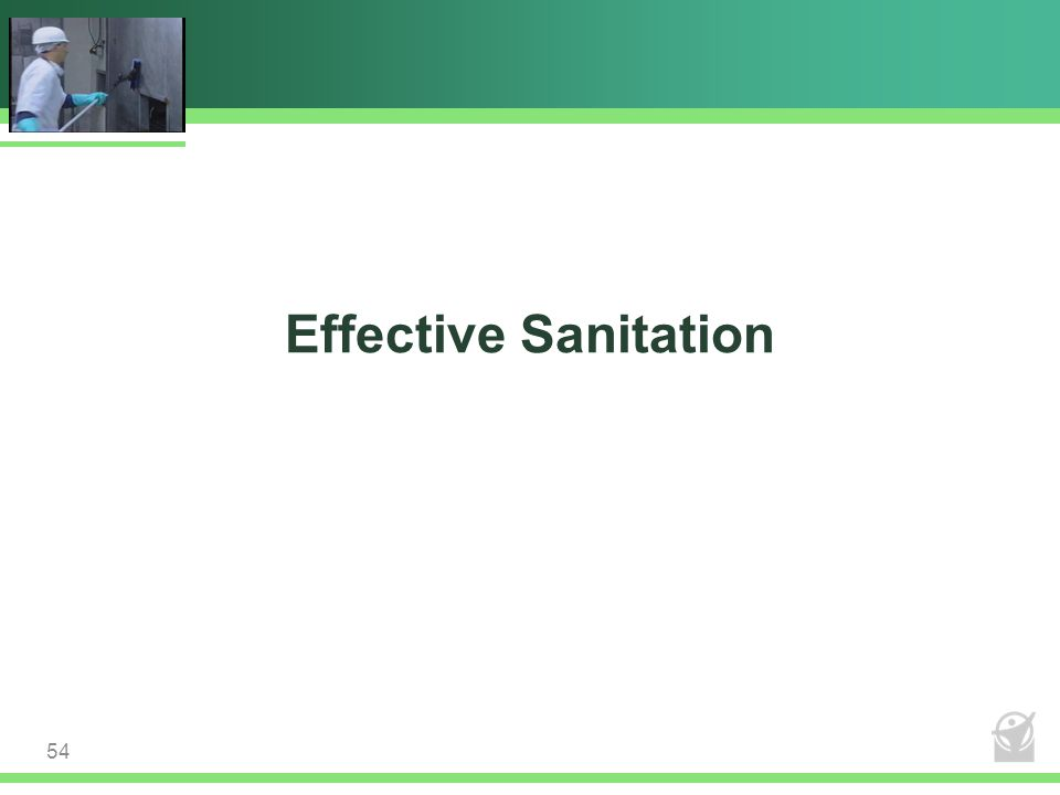 Effective Sanitation 54