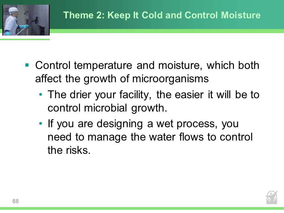 Theme 2: Keep It Cold and Control Moisture