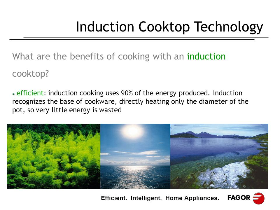 Benefits Of Induction Cooker ~ Think efficient cook ppt download