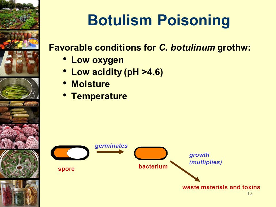 Botulism Poisoning Favorable conditions for C. botulinum grothw:
