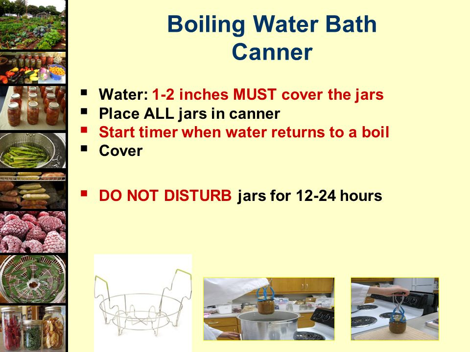 Boiling Water Bath Canner