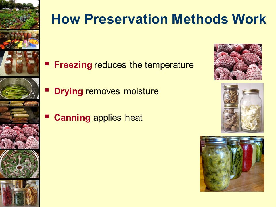 How Preservation Methods Work