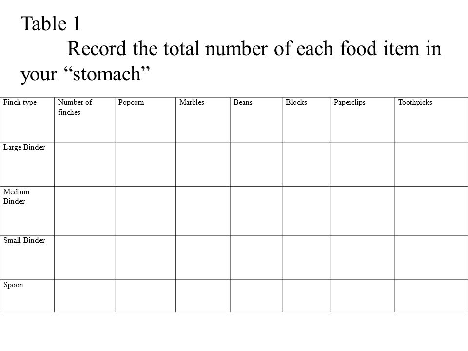 Record the total number of each food item in your stomach