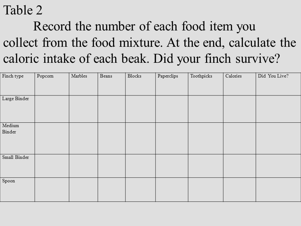 Record the number of each food item you
