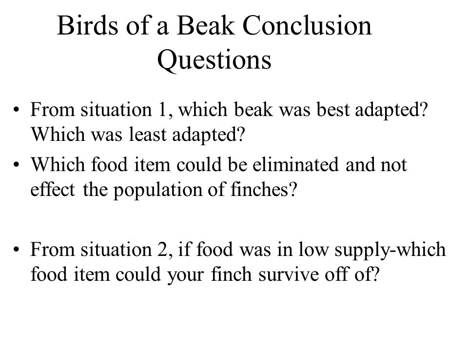 Birds of a Beak Conclusion Questions
