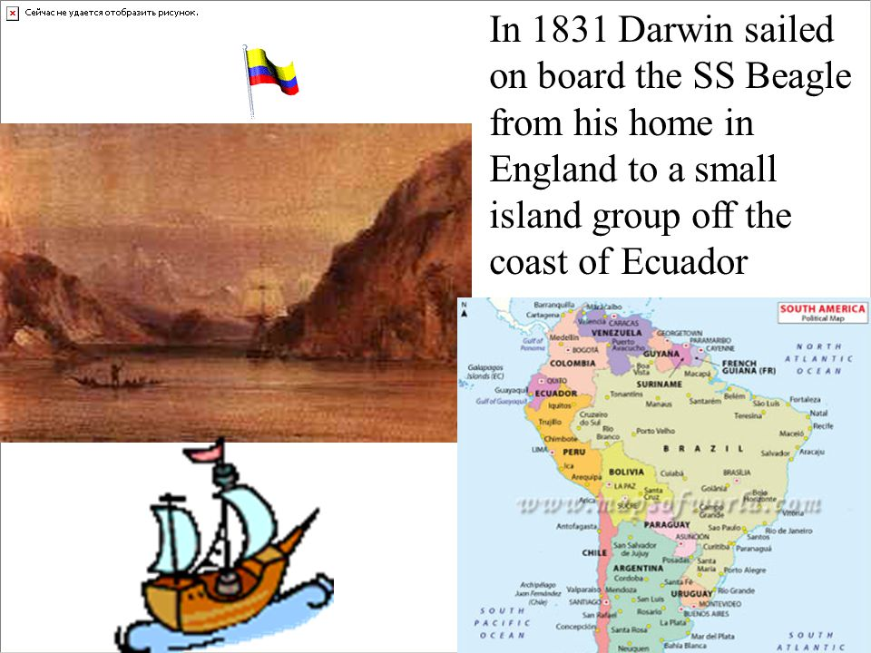 In 1831 Darwin sailed on board the SS Beagle. from his home in. England to a small. island group off the.