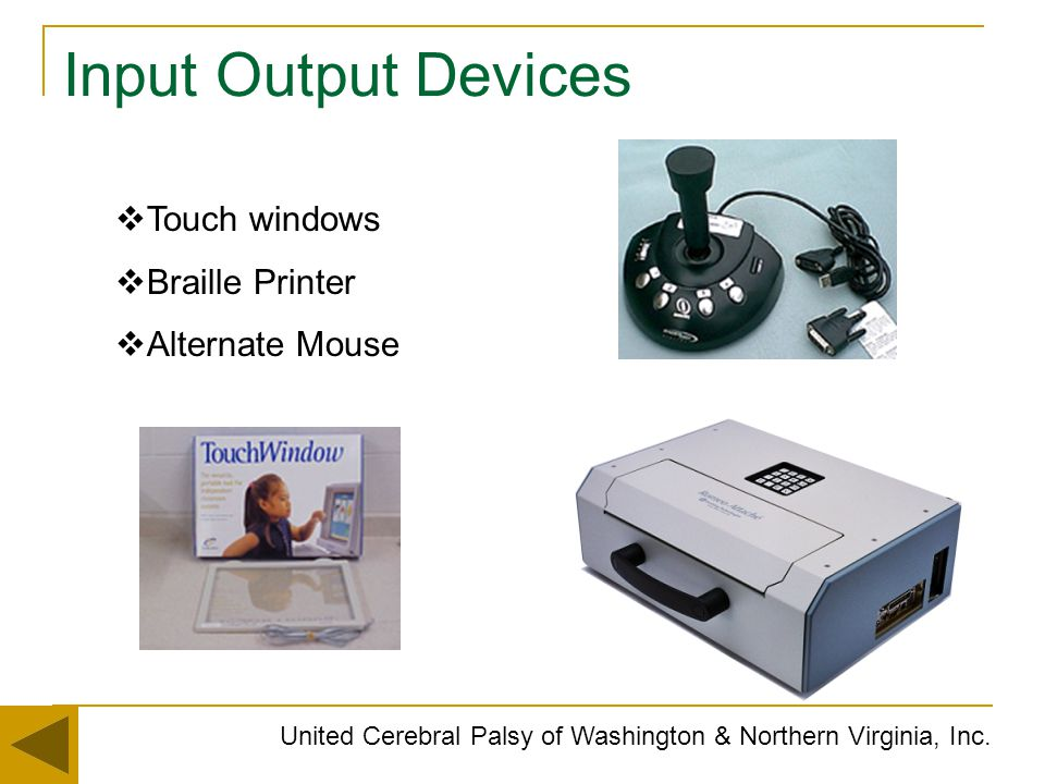 Input Output Devices Touch windows Braille Printer Alternate Mouse