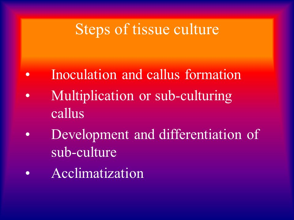 Steps of tissue culture
