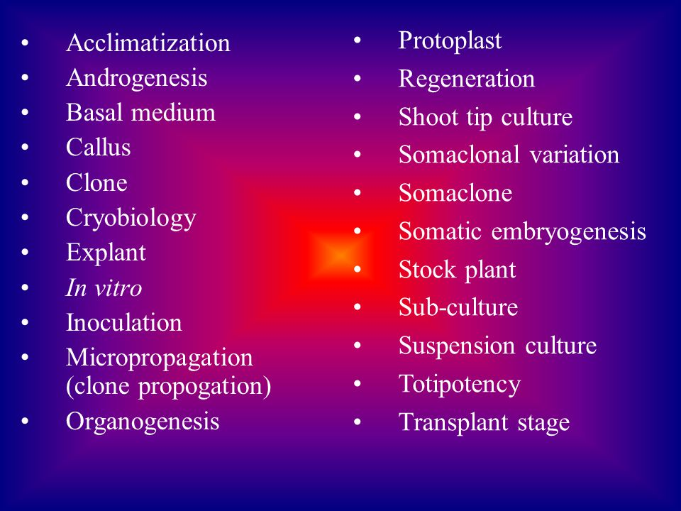 Protoplast Regeneration. Shoot tip culture. Somaclonal variation. Somaclone. Somatic embryogenesis.