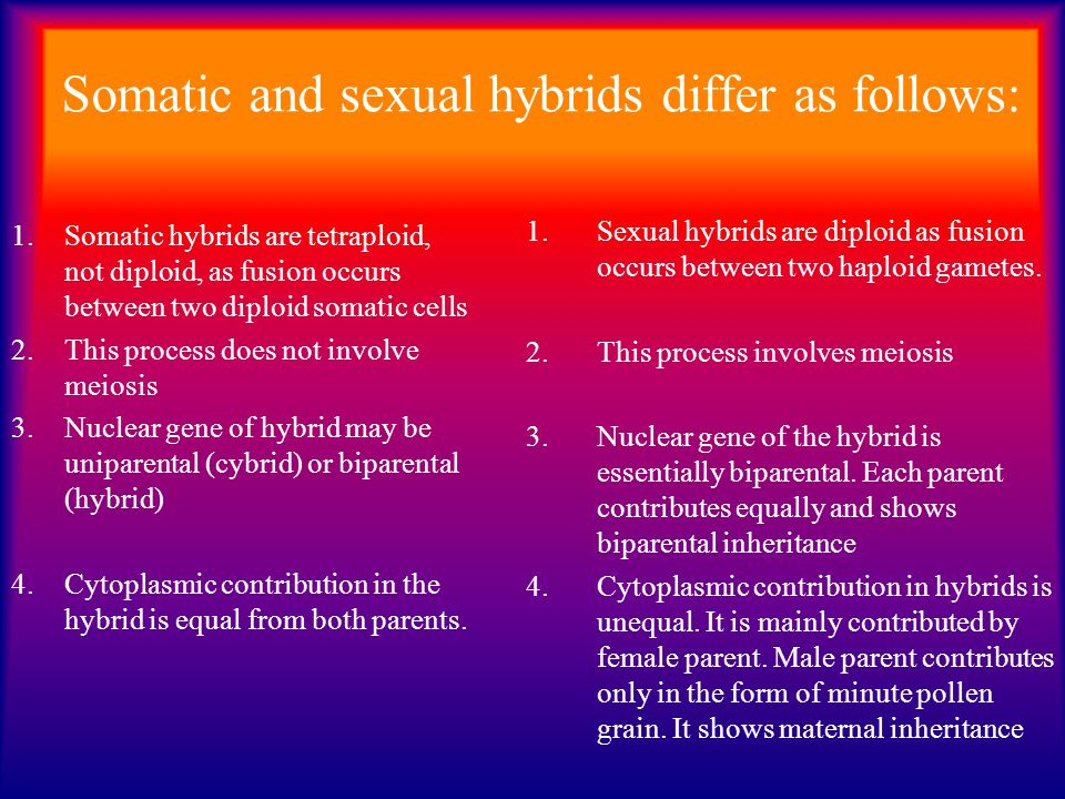 Somatic and sexual hybrids differ as follows:
