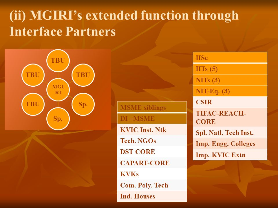 (ii) MGIRI's extended function through Interface Partners