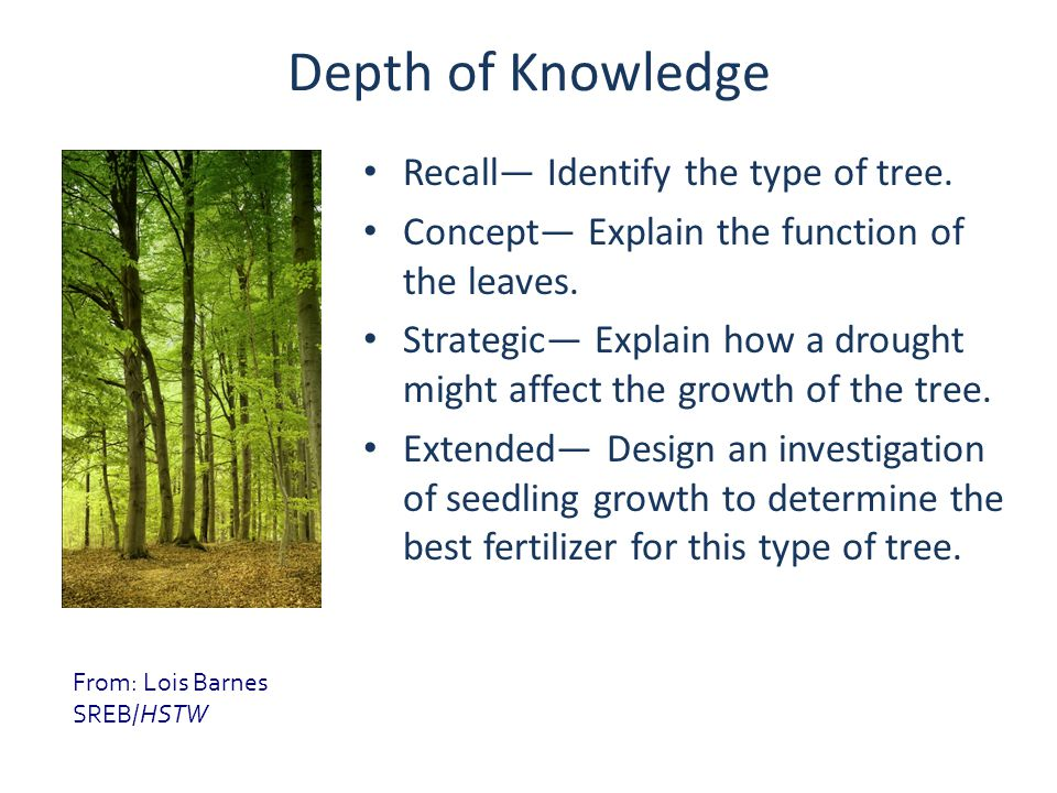 Depth of Knowledge Recall— Identify the type of tree.