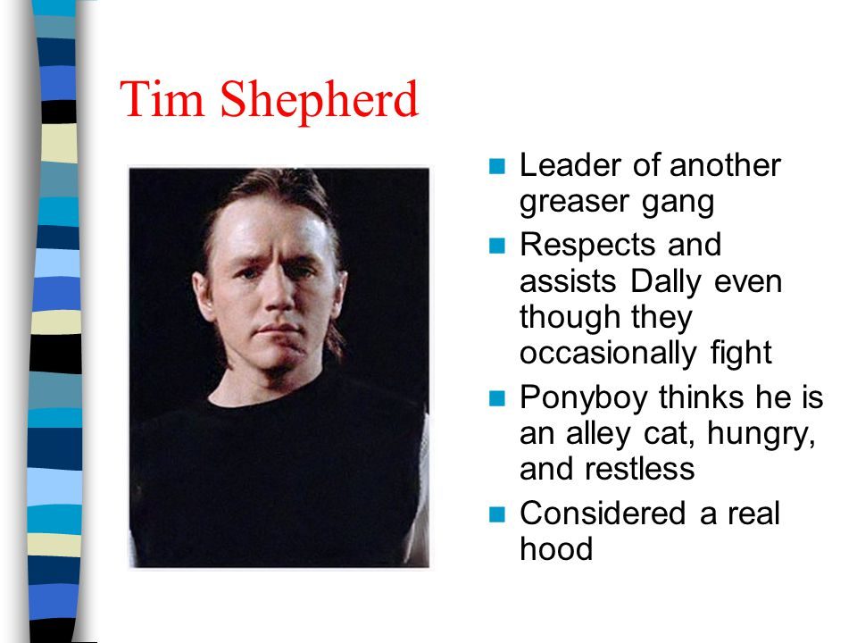 Tim Shepherd Leader of another greaser gang