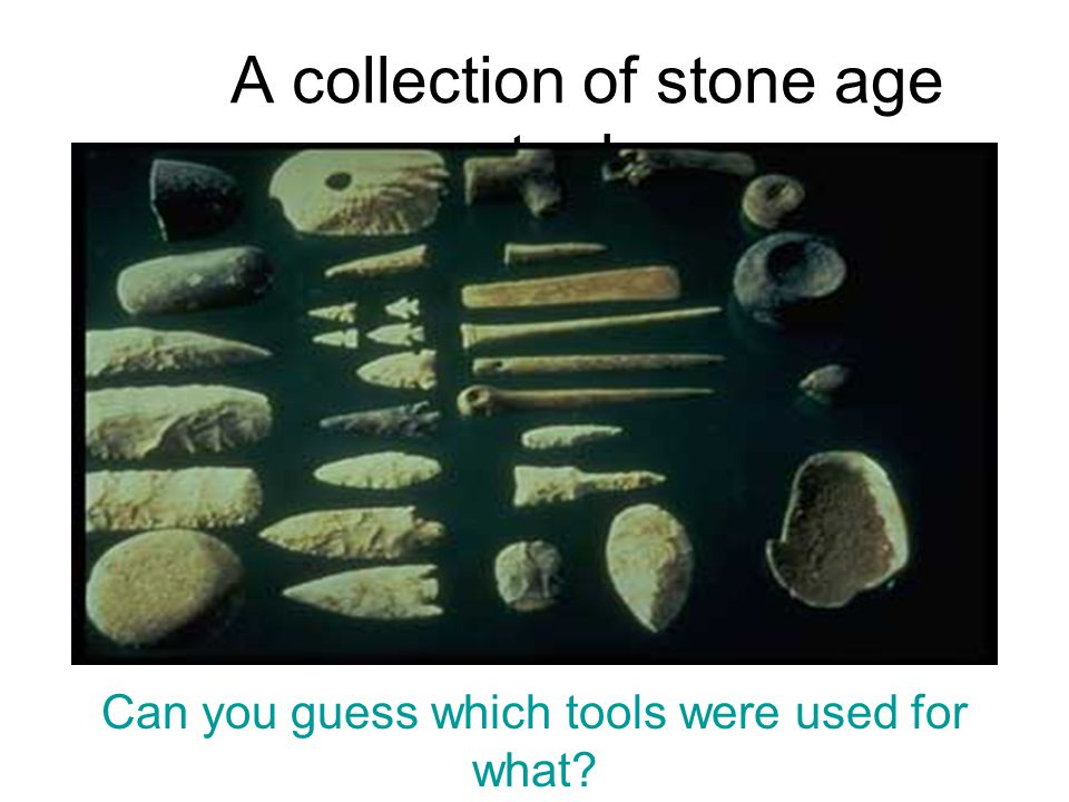 A collection of stone age tools: