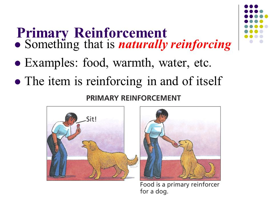 Primary Reinforcement