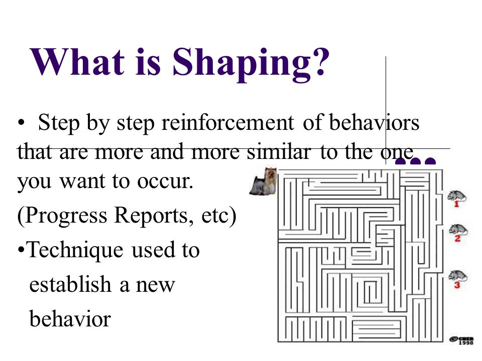 What is Shaping Step by step reinforcement of behaviors that are more and more similar to the one you want to occur.