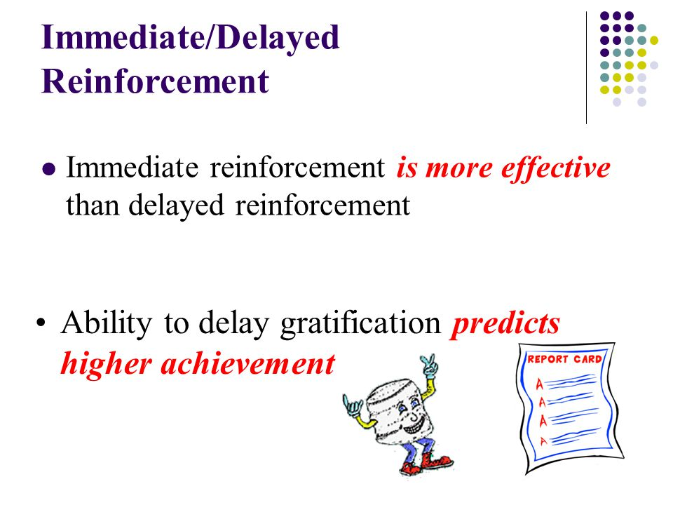 Immediate/Delayed Reinforcement