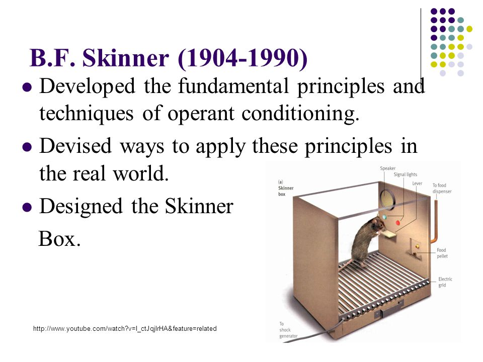 b f skinner operant conditioning Operant conditioning is a type of learning in which an individual's behavior is modified through reinforcement or punishment skinner's 1938 work the behavior of organisms was the beginning of his work in the field of operant conditioning.