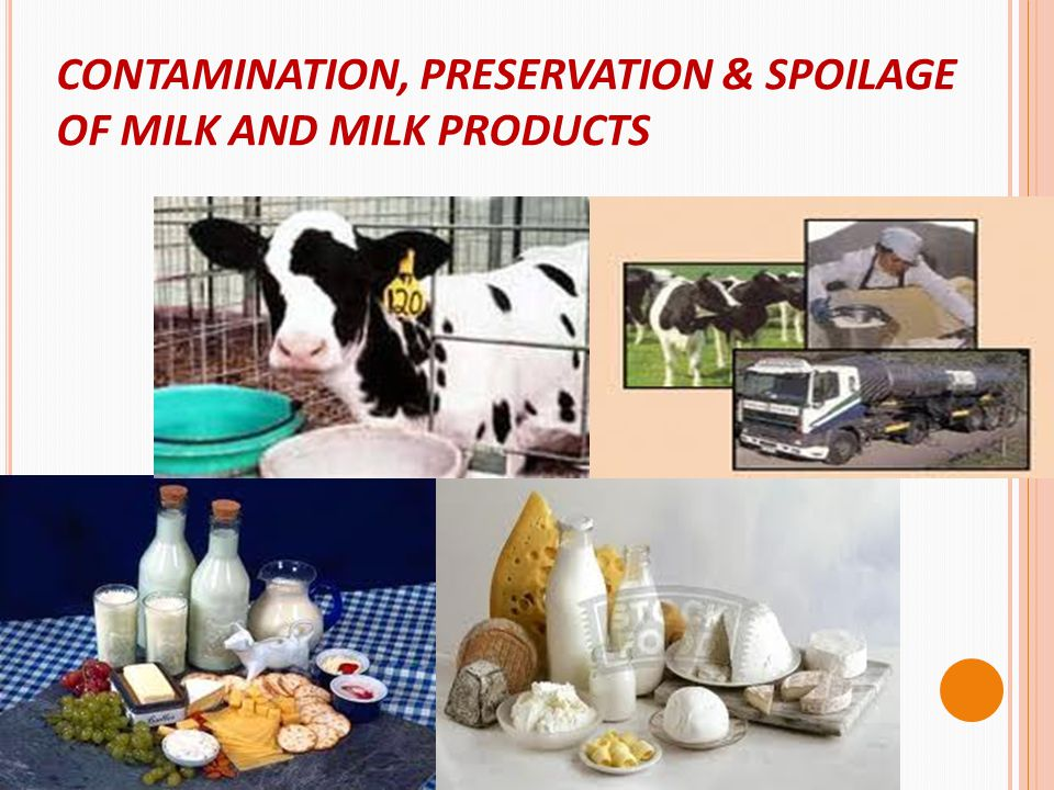 CONTAMINATION, PRESERVATION & SPOILAGE OF MILK AND MILK PRODUCTS