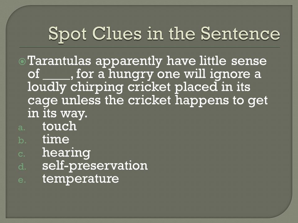 Spot Clues in the Sentence