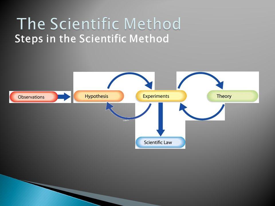 The Scientific Method Steps in the Scientific Method