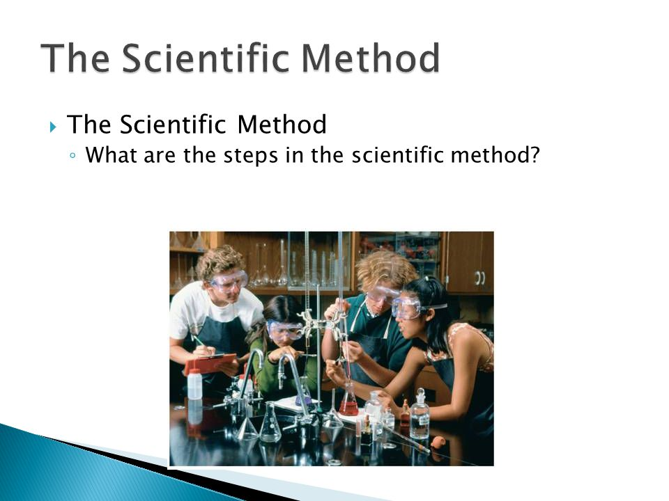 The Scientific Method The Scientific Method