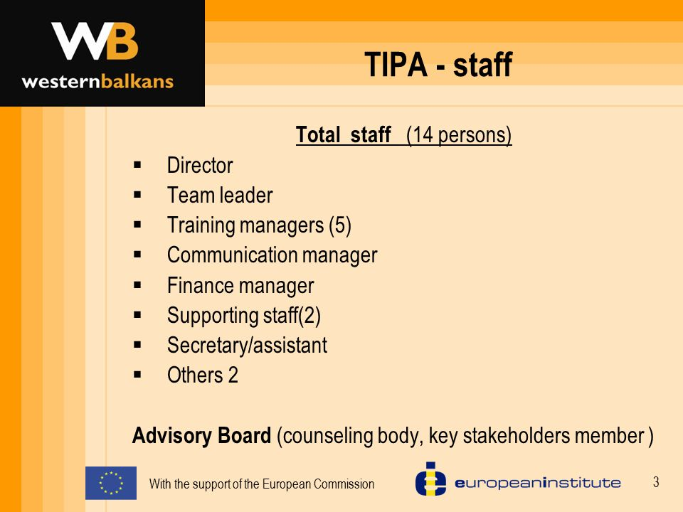 TIPA - staff Total staff (14 persons) Director Team leader