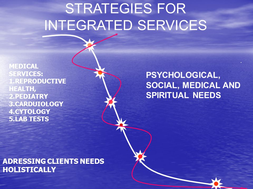 STRATEGIES FOR INTEGRATED SERVICES