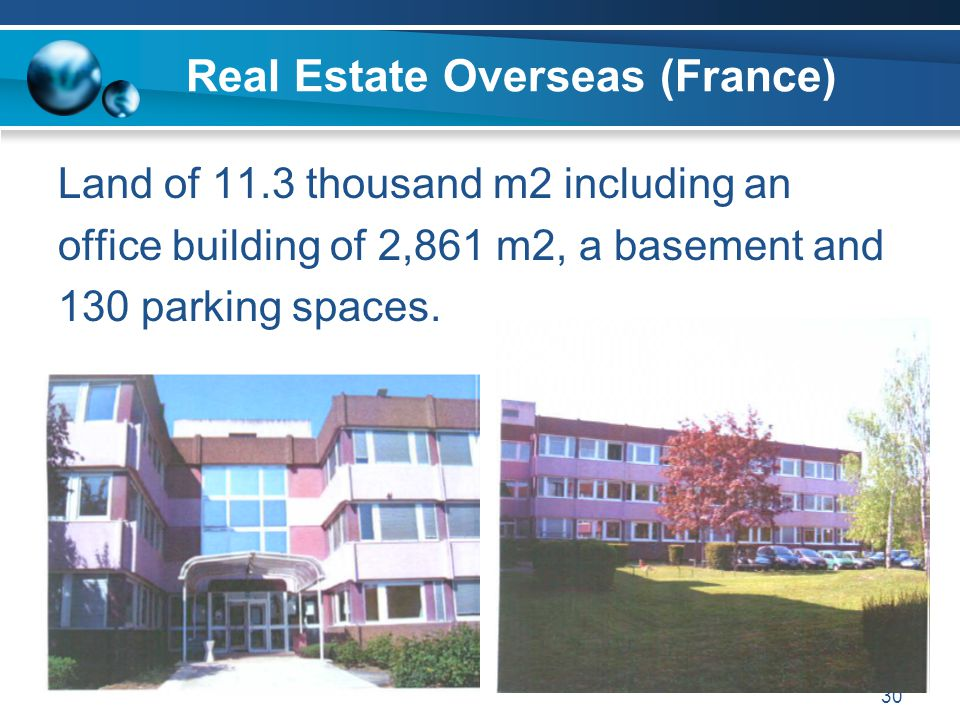 Real Estate Overseas (France)