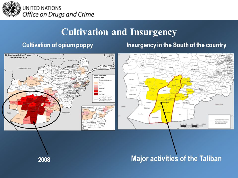 Cultivation and Insurgency