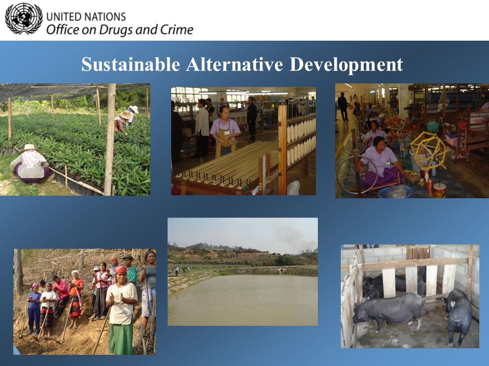 Sustainable Alternative Development