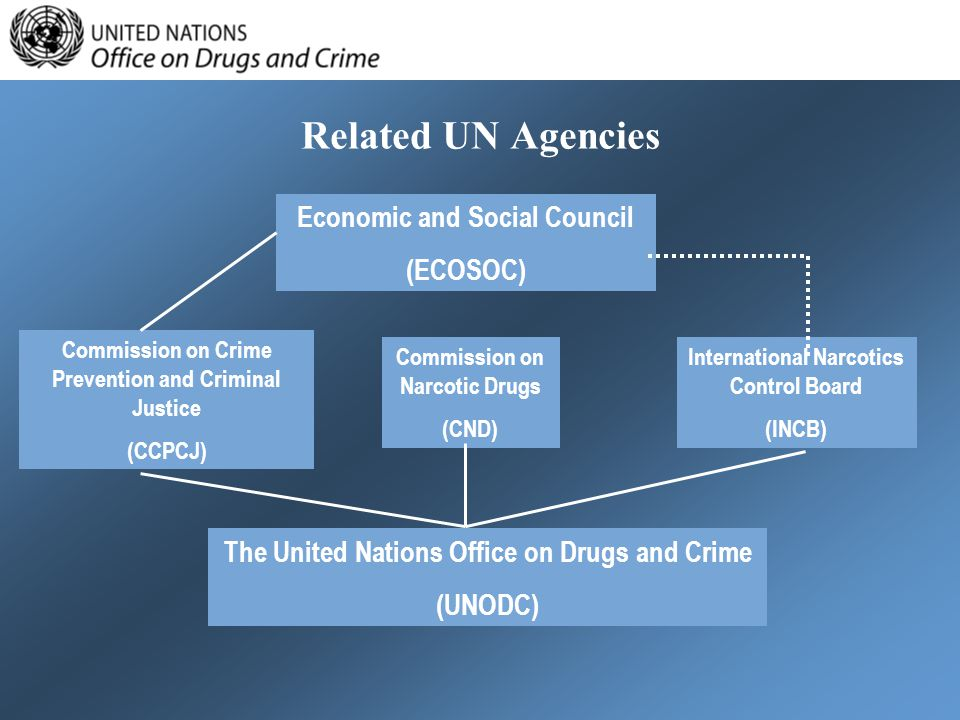 Related UN Agencies Economic and Social Council (ECOSOC)