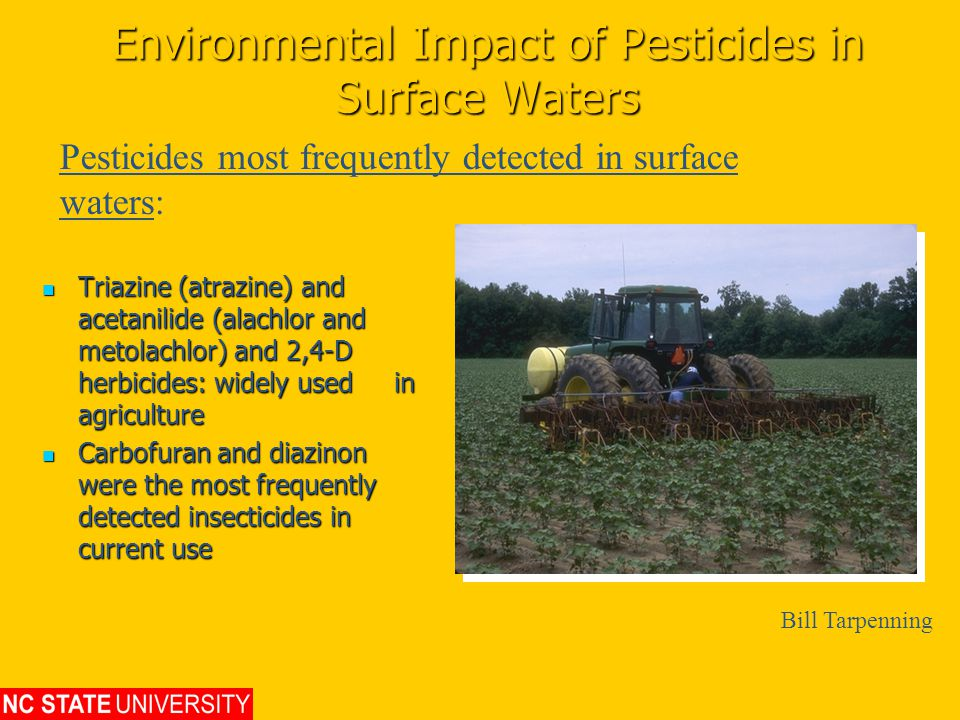 Environmental Impact of Pesticides in Surface Waters