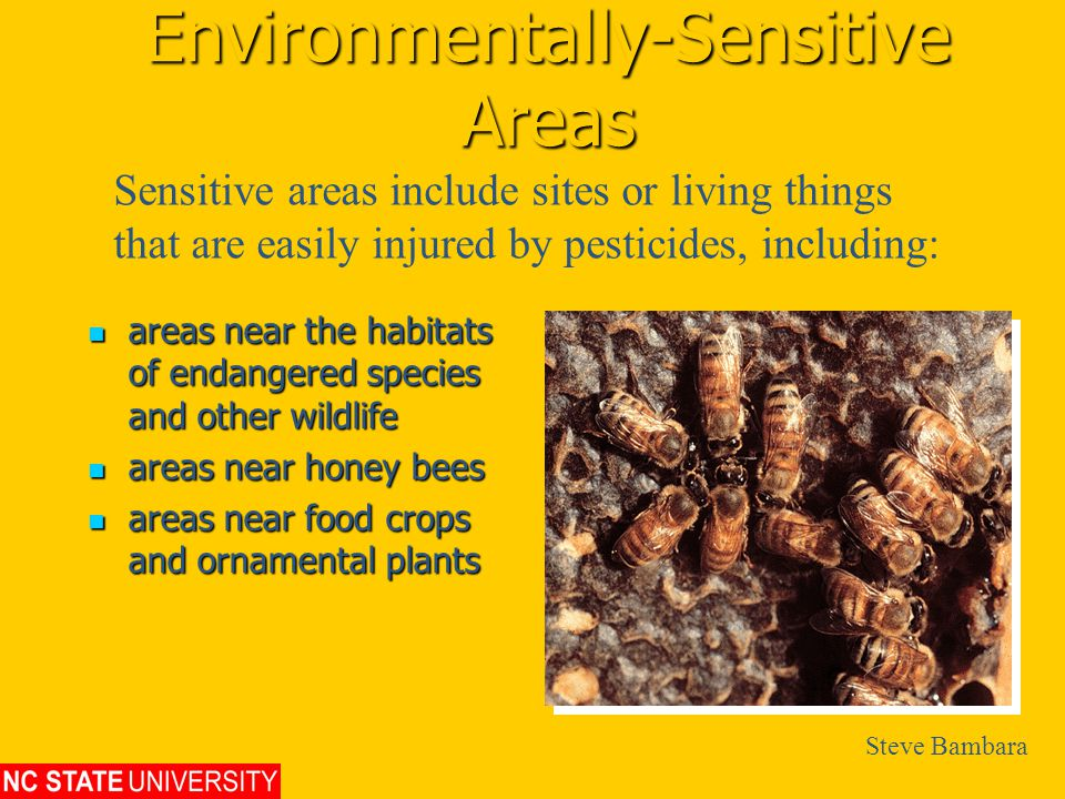 Environmentally-Sensitive Areas