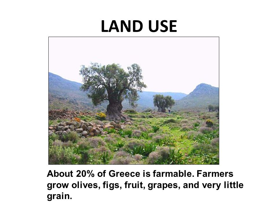 LAND USE About 20% of Greece is farmable.