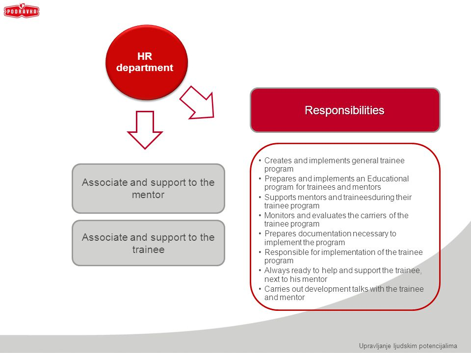 Responsibilities HR department Associate and support to the mentor