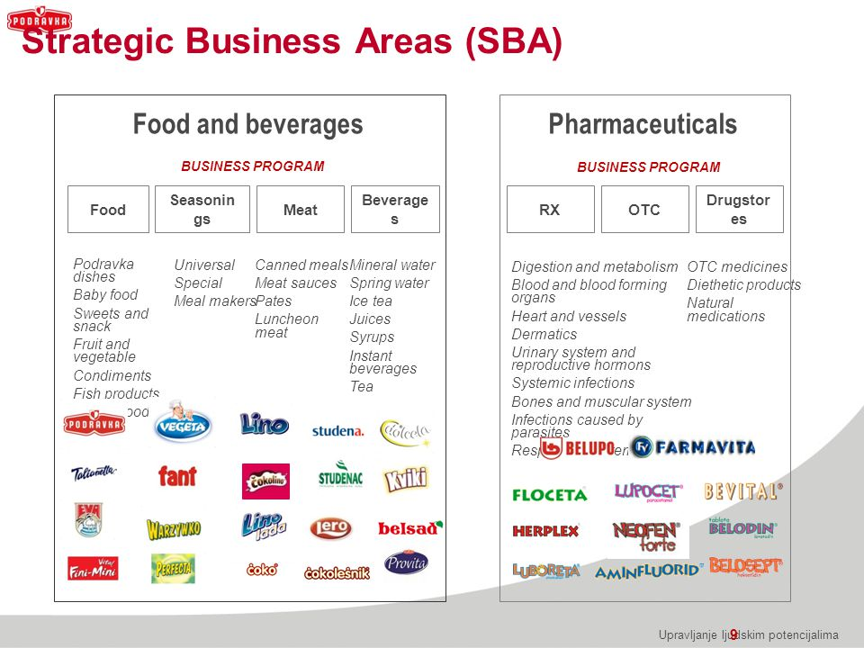 Strategic Business Areas (SBA)