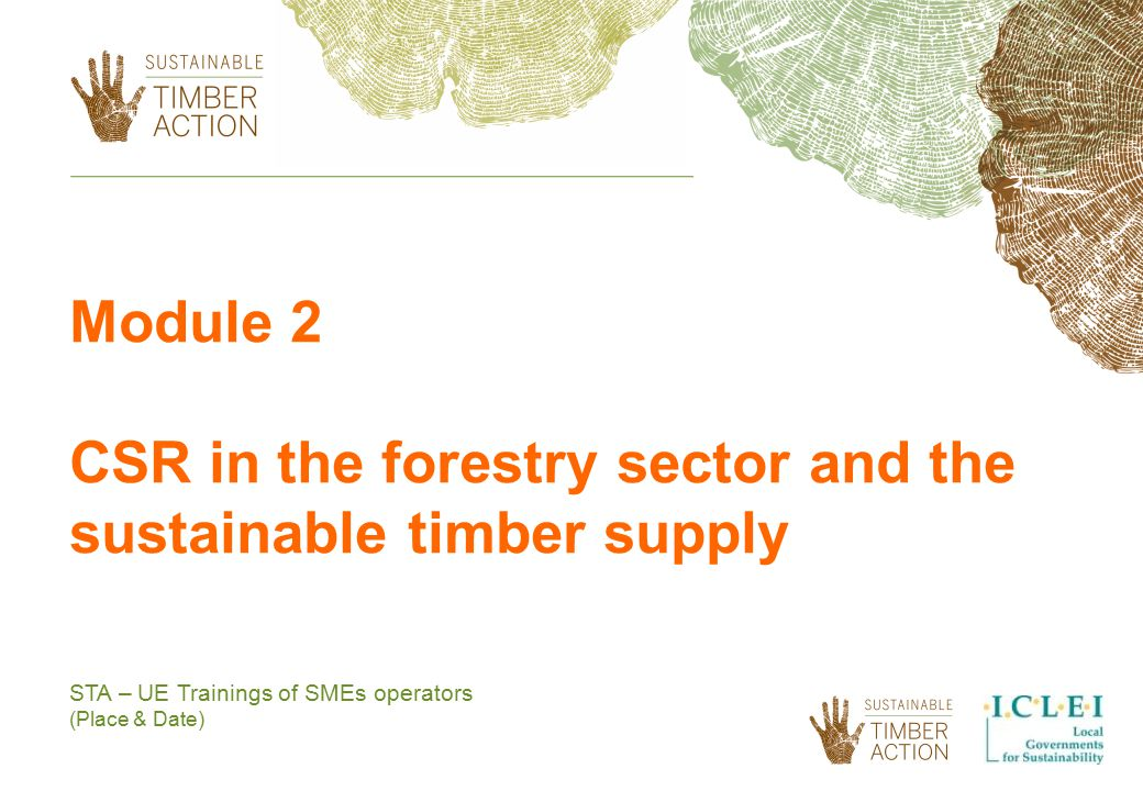 CSR in the forestry sector and the sustainable timber supply