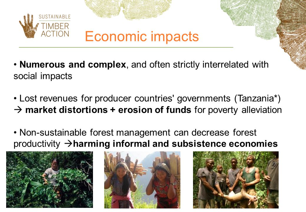 Economic impacts Numerous and complex, and often strictly interrelated with social impacts.