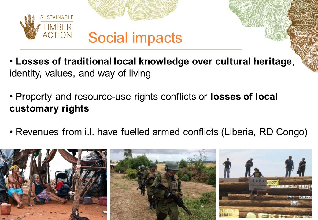Social impacts Losses of traditional local knowledge over cultural heritage, identity, values, and way of living.