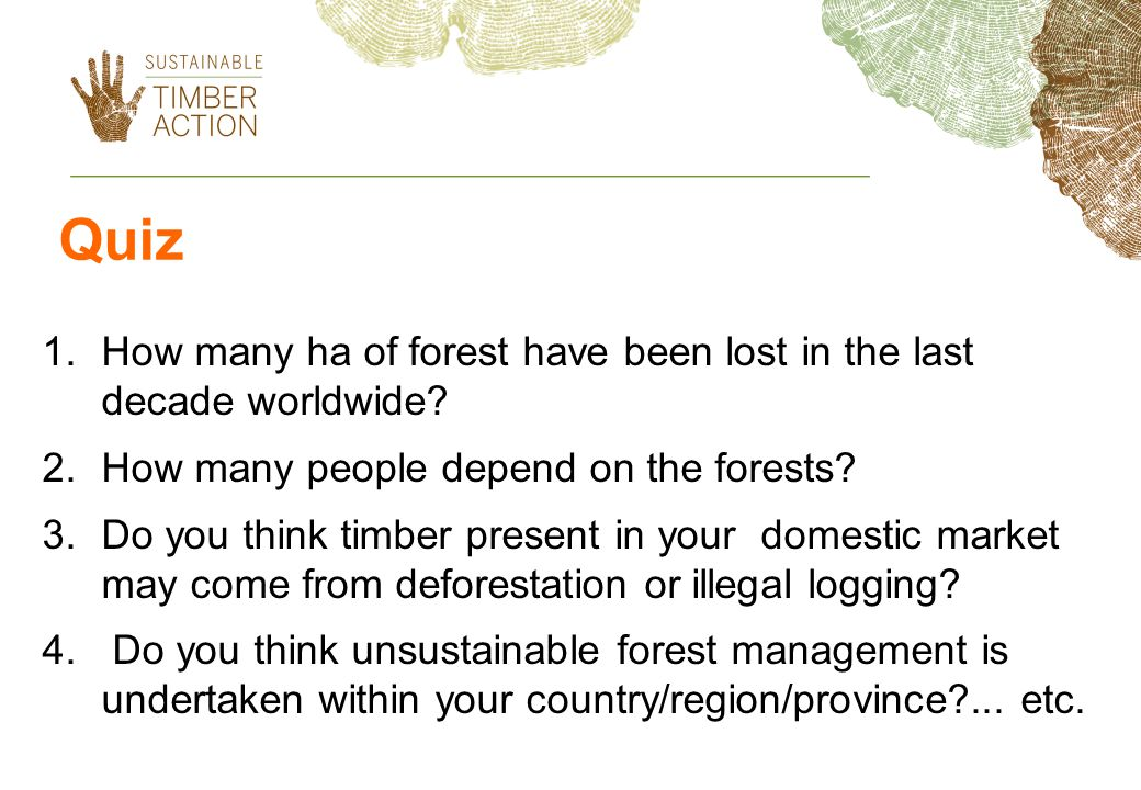Quiz How many ha of forest have been lost in the last decade worldwide How many people depend on the forests