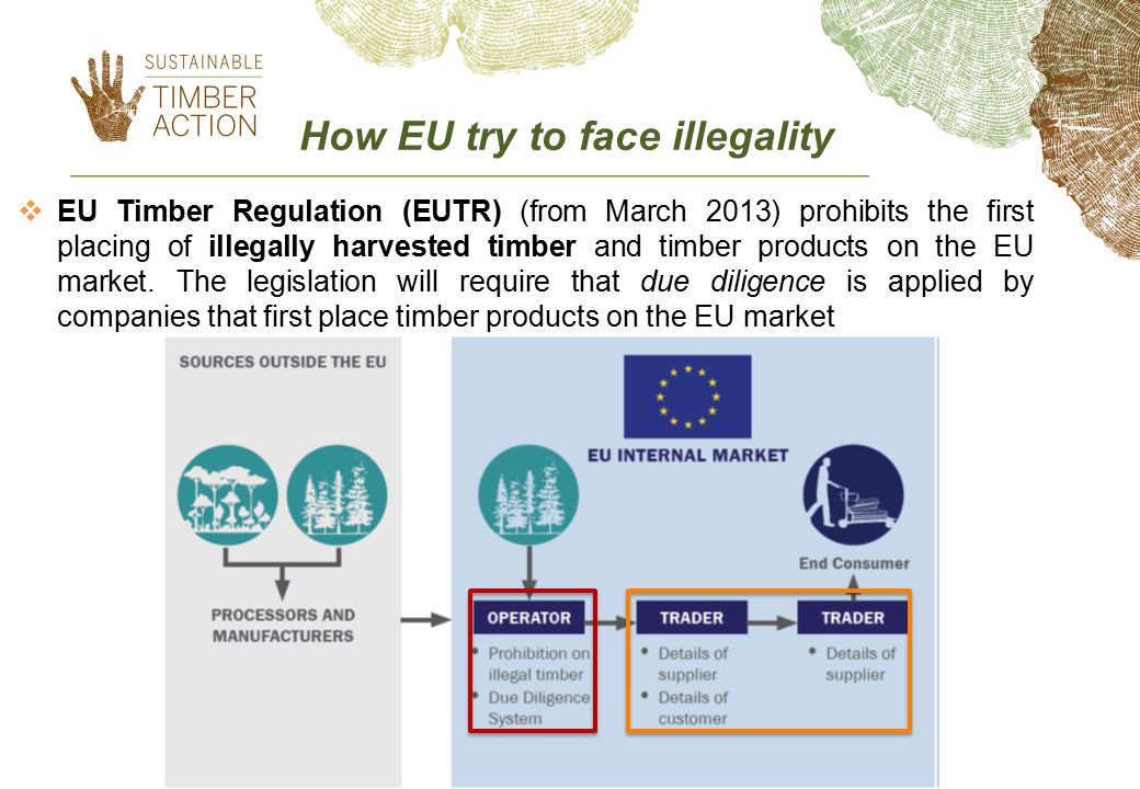 How EU try to face illegality