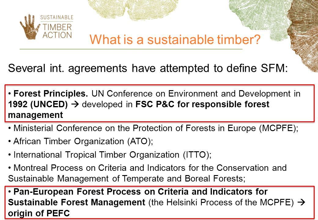 What is a sustainable timber
