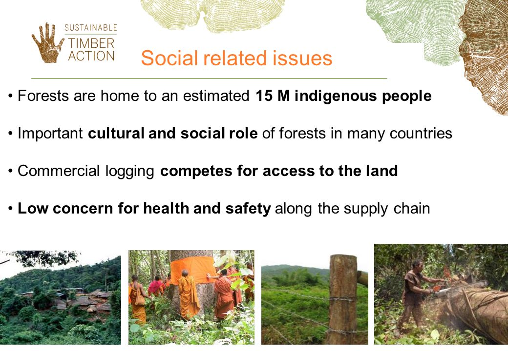 Social related issues Forests are home to an estimated 15 M indigenous people. Important cultural and social role of forests in many countries.