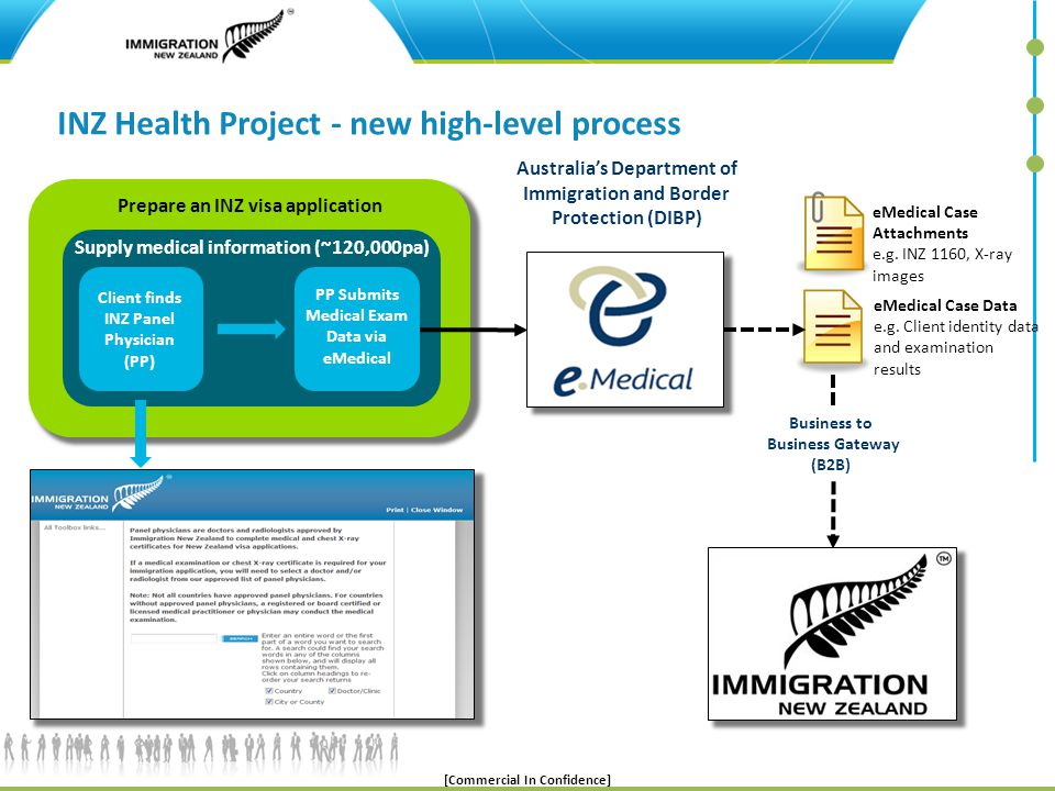 INZ Health Project - new high-level process