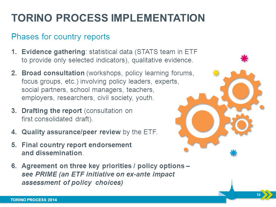 TORINO PROCESS IMPLEMENTATION