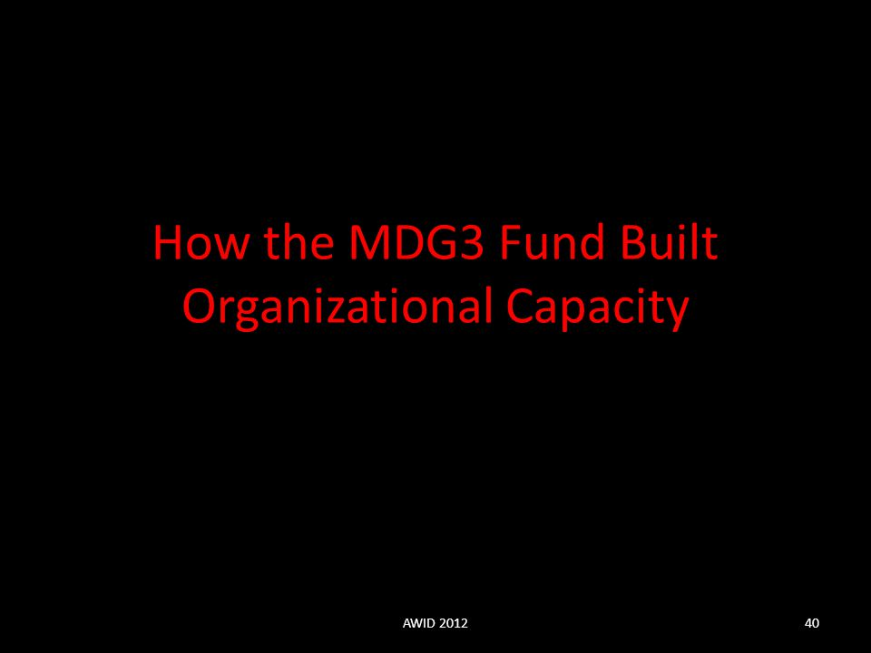 How the MDG3 Fund Built Organizational Capacity